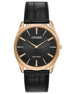 Citizen Eco-Drive Men's Stiletto