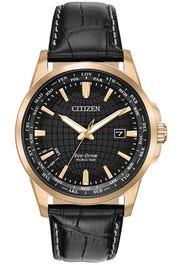 Citizen Eco-Drive Men's World Time Perpetual